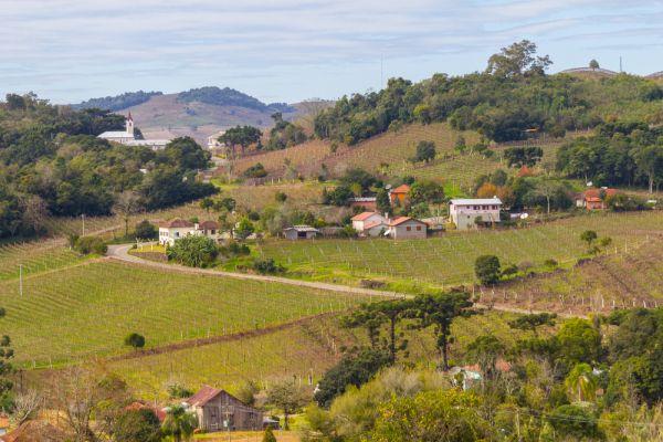 Conheça a serra gaúcha, visite o Vale dos Vinhedos em Bento Gonçalves