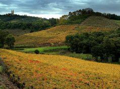 Vale dos Vinhedos em Bento Gonçalves, Cidades Serranas do Brasil