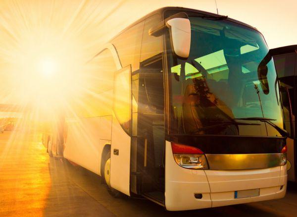 Viaje de ônibus para o Inhotim