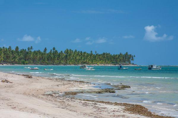 Praia do Gunga - melhores praias do Nordeste