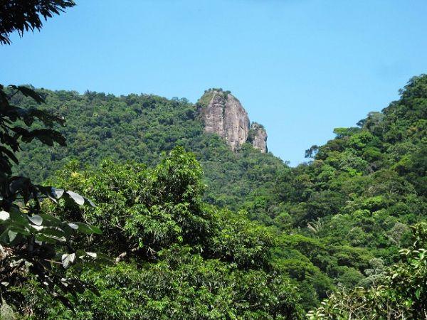 Pico da Tijuca Mirim - trilhas do Rio Janeiro