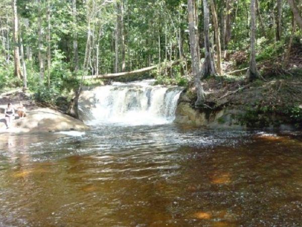 Cachoeira Berro D'Água, Presidente Figueiredo - AM | Foto: Banco de Imagens