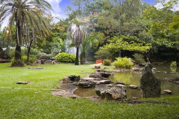 Roteiro em Caldas Novas: Jardim Japonês