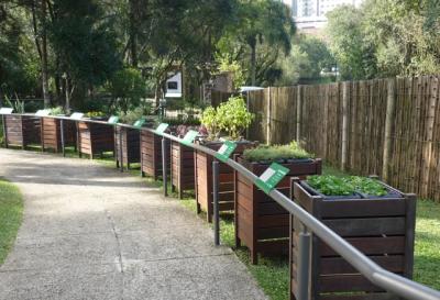 Conheça o Jardim das Sensações em Curitiba com a Expresso Transporte