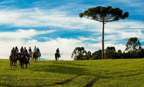 Fazenda Boqueirão, um dos ícones do Turismo Rural em Lages | Foto: Banco de imagens