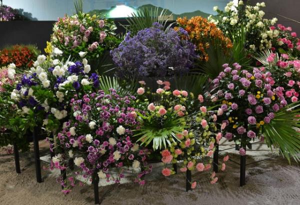 Flores da Festa das Flores e Morangos de Atibaia