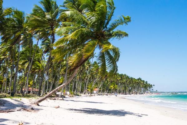 Praia dos Carneiros, RE | Foto: Banco de imagens